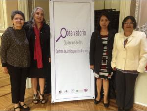 Lanzan organizaciones feministas, Observatorio Ciudadano de los Centros de Justicia para las Mujeres