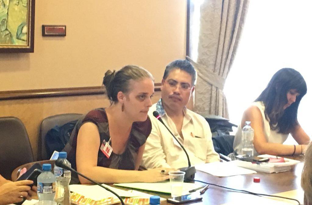 ONGs de la sociedad civil mexicana presentan situación de DH en el país en el marco del EPU