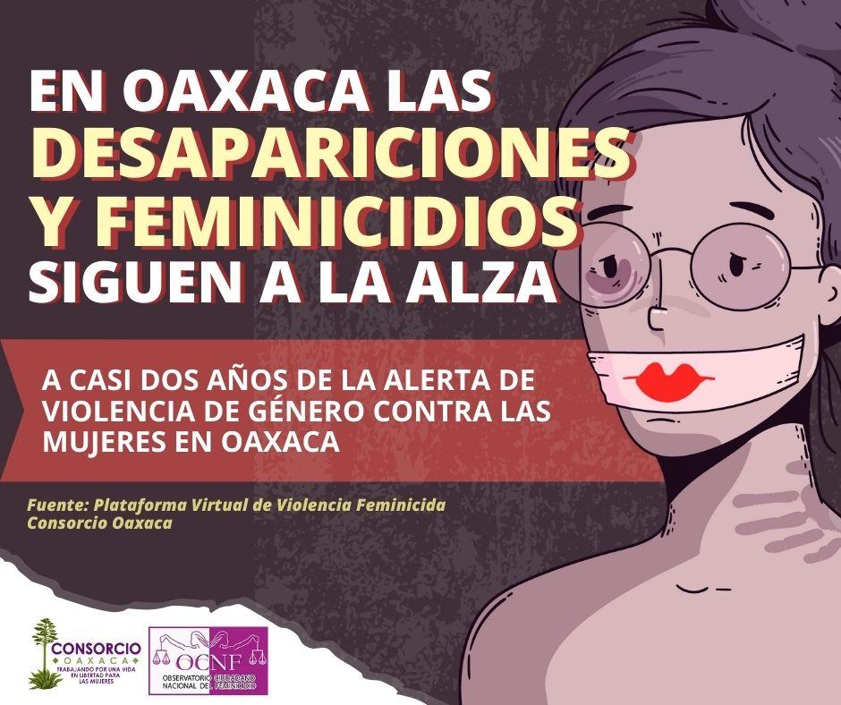 Mujeres desaparecidas y feminicidios a dos años de la Alerta de Violencia de Género en Oaxaca.