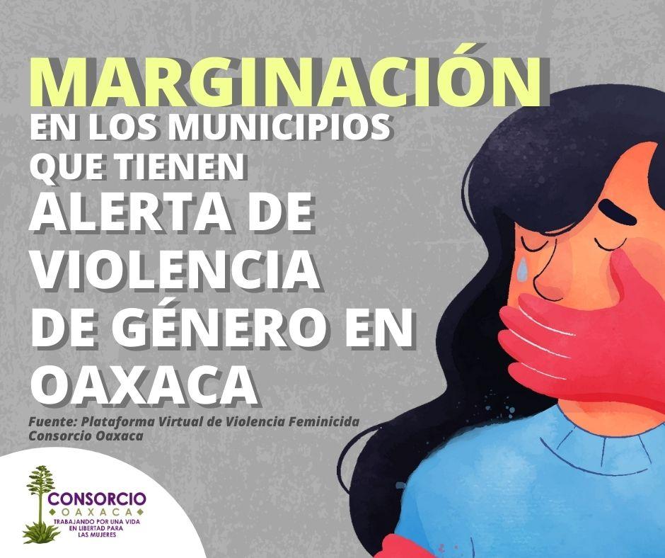 Alerta de Violencia de Género contra Mujeres en municipios marginados de Oaxaca.