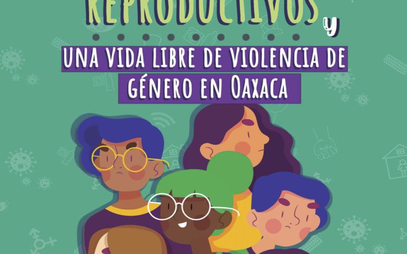 Personas jóvenes de la  Costa, Sierra Norte y Valles Centrales presentan Agenda Ciudadana por sus derechos