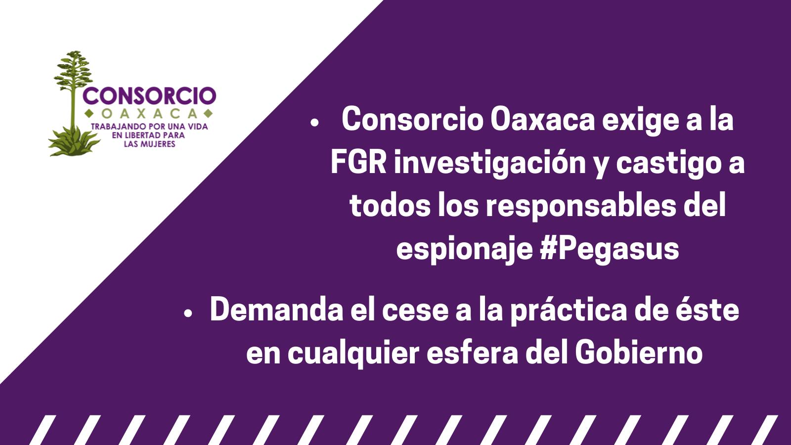 Repudiamos el espionaje masivo e ilegal en contra de personas defensoras durante sexenio de Enrique Peña Nieto